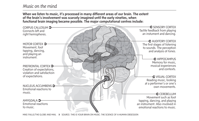3022942-inline-i-1-music-and-our-brains